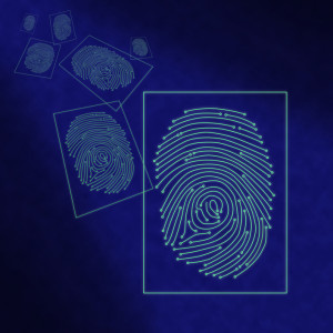 Electronic digital fingerprint processing